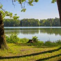 На озере Белом :: Дмитрий Балашов