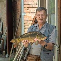 Зеркальный карп, 2.5 кг. :: Юрий ЛМ