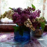 Весны любимый аромат... :: Наталья Соколова