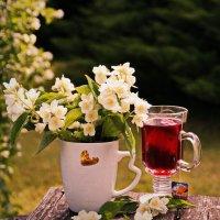 Утренний чай... :: Татьяна Ивановна
