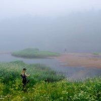 Туманное утро на реке Оять. :: Владимир Питерский