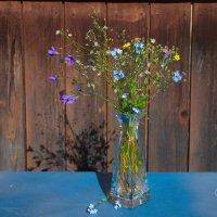 Полевые цветы :: Валентина Папилова