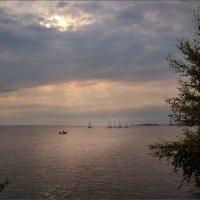 На заливе... :: Сергей Кичигин