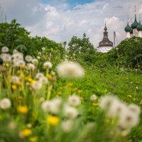 Ростов как состояние души :: olaf_rogers Нефотографов