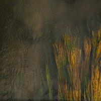 Осенний пейзаж с дождливым небом. :: Сергей Мартьяхин
