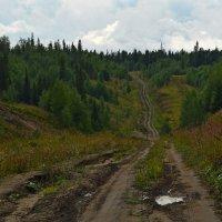 Российские дороги - семь загибов на версту :: Елена Третьякова