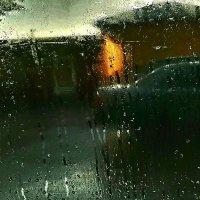 Из окна автомобиля :: Tanja Gerster