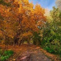 Золотая осень в Тушино :: Dmitriy Vargaz