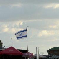 флаг национального государства. :: Пётр Беркун