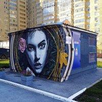 Уличный арт. :: Евгений Шафер