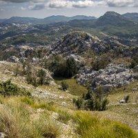Национальный парк Ловчен. Черногория. :: Владимир Новиков