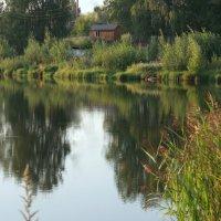Домик в деревне :: Нэля Лысенко