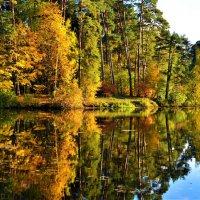 Осень улыбается светло:-) :: Ольга Русанова (olg-rusanowa2010)