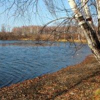 У озера... :: Нэля Лысенко