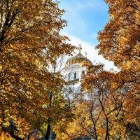 Такая рыжая осень... :: Анатолий Колосов