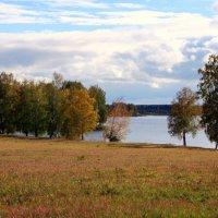 Золотые  осенние дни... :: Нэля Лысенко