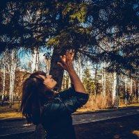 Как в лесу :: Света Кондрашова