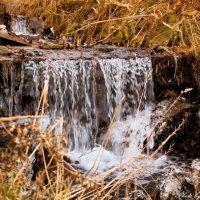 вода вода :: Anna Gubina