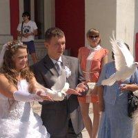 Свадьба сестры :: Алексей Золтуев