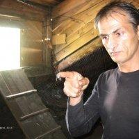 Паук :: Олег Алиев