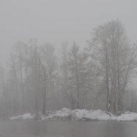 Туман :: Светлана Франчук