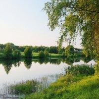 Лето. :: Victor Klyuchev
