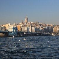 Стамбул :: Larisa Ulanova