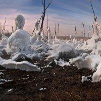Мертвый лес :: Евгений Никитин
