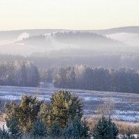 Морозное утро. :: Валерий Молоток