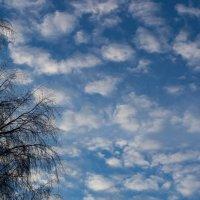 Небо №3 :: Natalia Satori