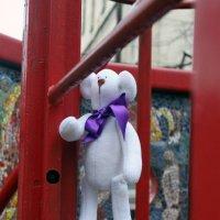 Мишка на прогулке :: Дина Нестерова