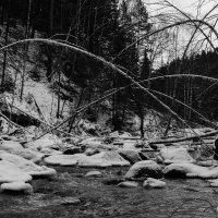 мосты :: Наталья Карышева