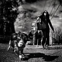 Кто кого прогуливает? :: Roman Mordashev