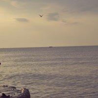 Утро лето море :: Вова Токар