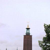 Вид на ратушу. Стокгольм :: Ольга Иргит