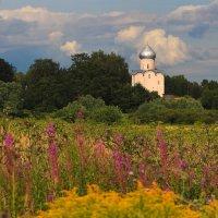 Новгородский пейзаж с видом церкви Спаса на Нередице. :: Николай Кондаков