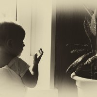 ребенок и цветок :: Caша Джус