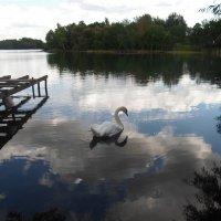 август_на озере Белом4 :: Мария Т
