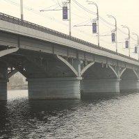 Чернавский мост :: Лариса