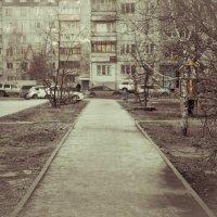 Мой город :: Света Кондрашова