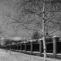 первый московский снег :: елена брюханова