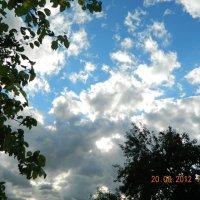 Летнее небо :: Надежда Замостик