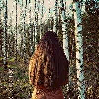 лес :: Кристина Бык