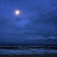 Лунная ночь :: Arman S