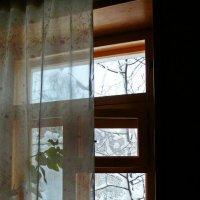 Окно и за окном. :: Владимир Михайлович Дадочкин
