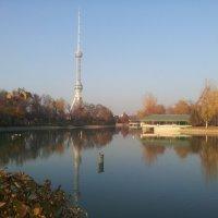 Ташкент.Телебашня :: юлия Силина