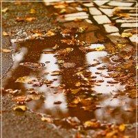 Осень на асфальте... :: АндрЭо ПапандрЭо