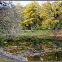 Пушкинская осень :: vadim