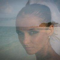 Мальдивы - медовый месяц 32 :: Александр Беляков