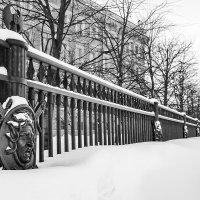 Ограда Инженерного замка в снегу (чб) :: Valerii Ivanov